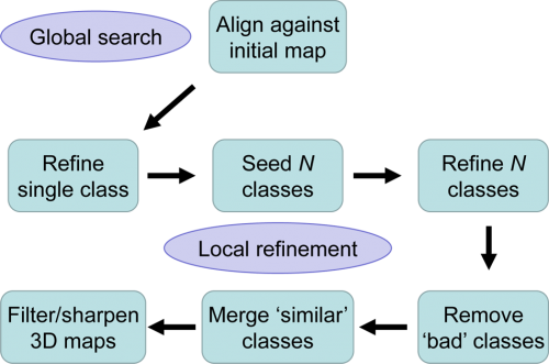 FrealignX Workflow